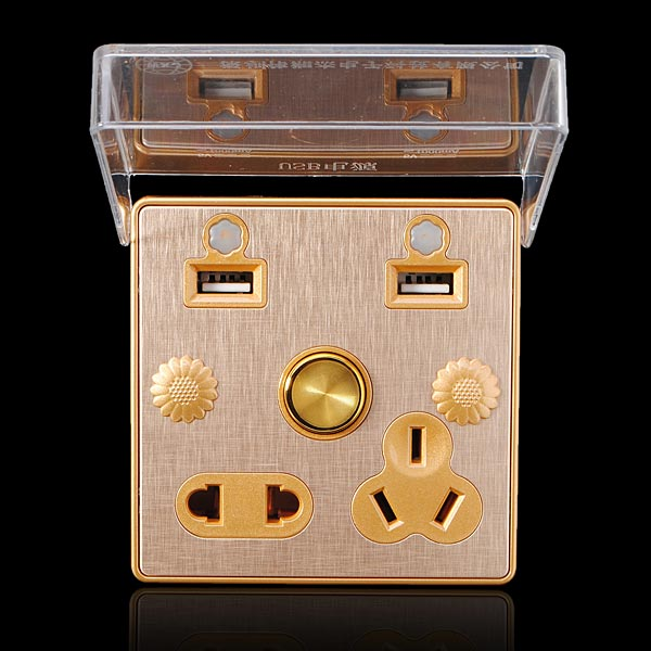 110-250V Double USB Socket with Control Switch and 5 Hole Socket