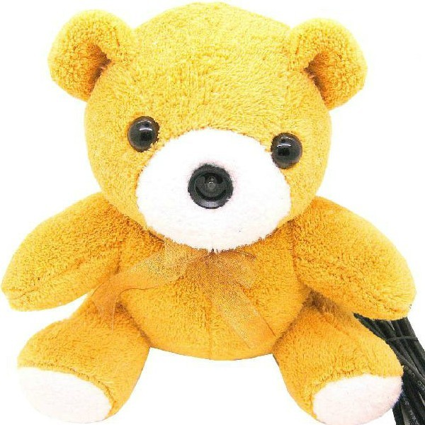 Bear Cartoon Plush Doll Webcam With Microphone For PC